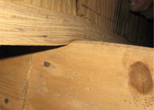 A failing girder showing signs of compression damage in a Alberta home